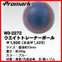 Wb-2272_