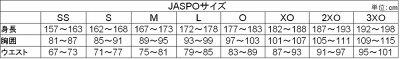 mizuno_A60WS-250_A60WP-250