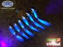 ロデオクラフト UVフラッシュ プロショップK's オリジナルカラー スプーン RodioCraft 【メール便OK】【etr_r】