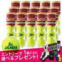 James4-new15-r-