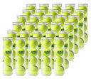 DUNLOP(ダンロップ)プラクティス1箱(30缶=120球)テニスボール【smtb-k】【kb】