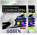 『即日出荷』 GOSEN(ゴーセン)「POLYLON LUMINASPIN(ルミナスピン)TS119」硬式テニスストリング(ガット)「あす楽対応」【KPI】[ネコポス可]