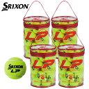 「2016モデル」スリクソン(SRIXON)エルピー LP 30球入り 1箱(30個×4=120球)ノンプレッシャーテニスボール 硬式テニスボール