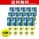 YONEX(ヨネックス) マッスルパワーツアー 1箱 4球入×15缶(60球) TMP50T テニスボール