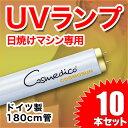 Cosmedico 日焼けマシン専用 UVランプ 蛍光管 100W 180cm 10本