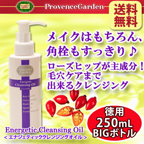 Pore care I can far angle valve care cleansing Rosehip Oil blending Energetic cleansing oil 250 mL old