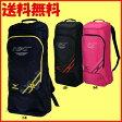送料無料◆MIZUNO◆2015年12月発売◆ラケットバッグ2本入れ 63JD6020 バッグ ミズノ