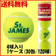 送料無料◆DUNLOP◆セントジェームス 4球入り (120球)(15缶×2箱) STJAMESE4DOZ 硬式テニスボール ダンロップ