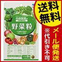 小林製薬 野菜粒 30日分 150粒 送料無料 メール便 栄...