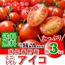 【送料無料】高知春野産・ミニトマトアイコ約3kg入り・北海道・沖縄は送料500円ご負担願います。05P03Sep16