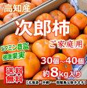 【送料無料】高知産・次郎柿約8kg入りご家庭用北海道・沖縄は送料500円・柿・甘柿10P2
