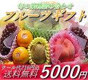 【送料無料】果物セット、フルーツセット