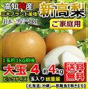 【送料無料】高知産新高梨4〜6玉入り約4kgご家庭用発送は、10月から【RCP】05P28Sep16