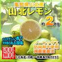 【送料無料】高知山北産温室レモン約2kgハウスレモン05P03Sep16