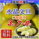 【送料無料】高知産・温室水晶文旦3kg7〜8玉サイズお買い得、文旦、ブンタン【RCP】05P28Sep16