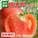 全国お取り寄せグルメ愛媛食品全体No.19