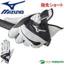 ミズノ ゴルフグローブ クロスフィット ●指先ショート● 片手用(左手装着用)5MJMS601【■M■】[Mizuno CROSSFIT 手袋]