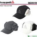 Qg02501