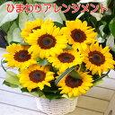 母の日 ギフト8【送料無料】ヒマワリ ひまわり 向日葵 アレンジメント アレンジ プレゼント 写真