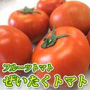 Tomato9_3