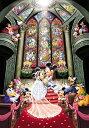 ディズニー ミッキーマウス 1000ピース ジグソーパズル ディズニー ファンタジーセレブレーション(51x73.5cm)(D-1000-252)[テンヨー] ...