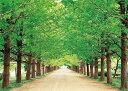 ジグソーパズル 500ピース 新緑の小道—東京(38x53cm) (05-107) エポック社 梱60cm t101