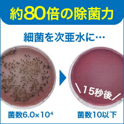 約80倍もの除菌力!/サルモネラ菌を使って実験