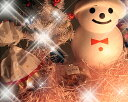 子供達も大喜び♪【クリスマス限定】素敵なクリスマスを雪だるまがお届け♪北海道スイーツ生キャラメル