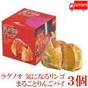 送料無料 ラグノオ ささき 気になるリンゴ×3個(りんごまるごとアップルパイ)