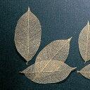 《 ドライフラワー 》★即日出荷★大地農園 ミニスケルトンリーフ 小 ゴールド 葉脈 花材 材料 ドライ 自然素材 ナチュラル アクセサリー材料 インテリア
