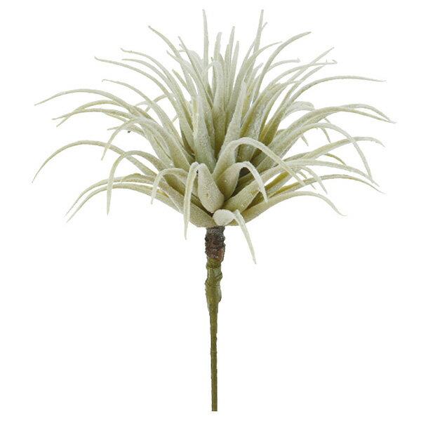 《 造花 グリーン 多肉植物 》Asca/アスカ ティランドシアエアプランツ サッカレンテン サボテン