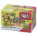 アイリスオーヤマ ぽかぽか家族 貼るミニ PKN60HM(60P