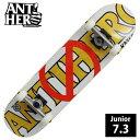 コンプリート ANTI HERO アンチヒーロー DOUBLE NEGATIVE MINI デッキサイズ 7.3インチ ANC-006 完成品 組立て済 スケートボード スケ..