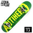 コンプリート ANTI HERO アンチヒーロー IT'S THE WOOD MINI デッキサイズ 7.3インチ ANC-007 完成品 組立て済 スケートボード スケボー