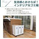 ゴミ箱 分別 ダストボックス 3分別ワゴン 横型 ベ...