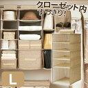 天馬 プロフィックス 衣類・小物整理ラック L ライトブラウン ( 衣類 収納ラック )