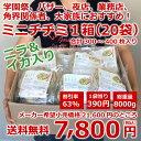ミニチヂミ ニラ&イカ入り400g(15〜20枚入り)1箱(20袋)【冷凍限定】チジミ