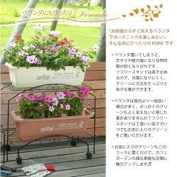 プランタースタンド(大)【ガーデニング】【スタンド】【ラック】【園芸】