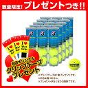 【送料無料】TOUR PRO(ツアープロ)『4球入×15缶』 - [テニスボール ブリヂストン/BRIDGESTONE]