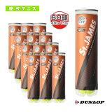 【】セントジェームス(St.JAMES)『4球×15缶』 - DSTJAMESA4 [テニスボール ダンロップ/DUNLOP]