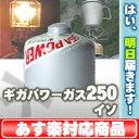 スノーピーク ギガパワーガス250 イソ [GP-250S]【あす楽対応】