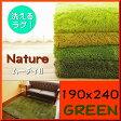 ラグ 洗える ラグマット 190×240 約 3畳 癒しカラー グリーン 緑 みどり 毛足35ミリ 超 ロング シャギーラグ 送料無料 カーペット ホットカーペットカバー 絨毯 洗濯可 ムートン 調