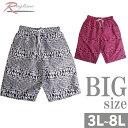 ショッピングポーター サーフパンツ 大きいサイズ メンズ 海パン 海水パンツ RUSTY メッシュ サポーター C300522-12