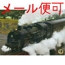 A4 SL 下敷き d (C11227  蒸気を吐く雄姿) 【大井川鉄道】【鉄道グッズ】