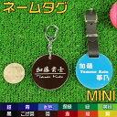 Mini-color-en-2