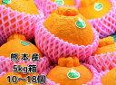 熊本産デコポン5kg箱くまもと産でこぽん(10〜18入)【贈...