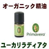 オーガニック精油■ユーカリ・ラディアタBIO 5ml プリマベーラ エッセンシャルオイル樹木系トップノート