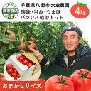 ショッピングラグ こだわり農家直送 千葉県大倉農園 酸味と甘みのバランス絶妙トマト SS〜Lトマト4kg