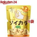ソイカラ チーズ味*9コ(27g9コセット)【ソイカラ】