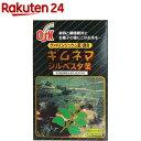 OSK ギムネマシルベスタ茶(128g(4g*32袋入))